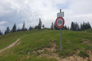 Gipfelweg zur Farrenpoint - Wegpunkt 4 entlang der Tour