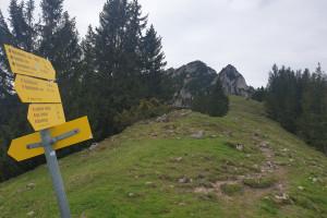 Entlang der Lechnerschneid - Wegpunkt 7 entlang der Tour