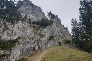 Anstieg zum Lechnerkopf - Wegpunkt 8 entlang der Tour