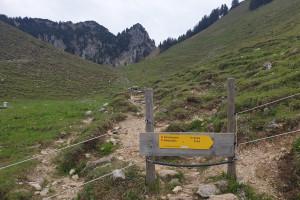 Hinter der Lechneralm - Wegpunkt 6 entlang der Tour