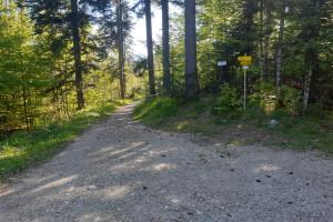 Abfahrt zur Euzenau - Wegpunkt 12 entlang der Tour