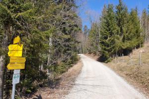 Abzweigung Kasalm - Wegpunkt 3 entlang der Tour