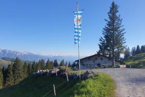 Feichteck Alm - Wegpunkt 11 entlang der Tour