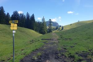 Wirtsalm - Sattel - Wegpunkt 11 entlang der Tour