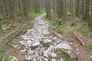 Weiterfahrt von der Aiblinger Hütte - Wegpunkt 11 entlang der Tour