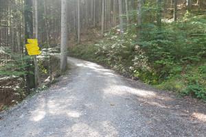 An der Abzweigung - Wegpunkt 4 entlang der Tour