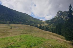 Wanderweg ab der Ruchenkopfhütte - Wegpunkt 9 entlang der Tour