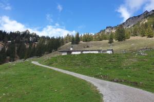 Vorbei an der Schellenbergalm - Wegpunkt 6 entlang der Tour