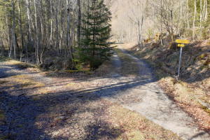 Abzweigung Richtung Almgrund - Wegpunkt 7 entlang der Tour