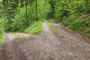 Abzweigung Wildbarren - Wegpunkt 9 entlang der Tour