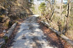 Anstieg Wildbarren - Wegpunkt 4 entlang der Tour