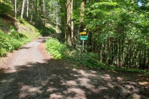 Ruine Kirnstein - Wegpunkt 3 entlang der Tour