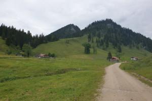 Almlandschaft Arzmoos - Wegpunkt 6 entlang der Tour