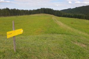 Feldweg Richtung Sternplatte - Wegpunkt 3 entlang der Tour