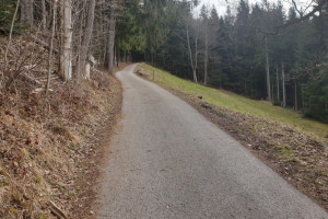 Anstieg Asphaltstraße Schwarzenberg - Wegpunkt 1 entlang der Tour