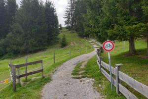 Letzter Anstieg - Wegpunkt 2 entlang der Tour