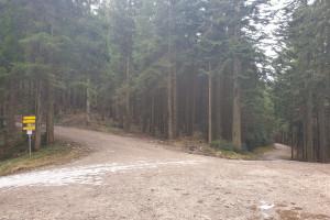 Wichtige Abzweigung - Wegpunkt 5 entlang der Tour