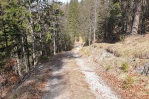 Abfahrt vom Schwarzenberg - Wegpunkt 12 entlang der Tour