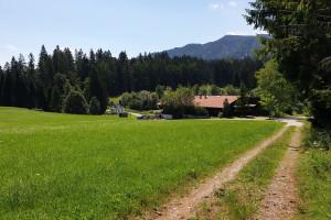 Wildgrub - Wegpunkt 13 entlang der Tour