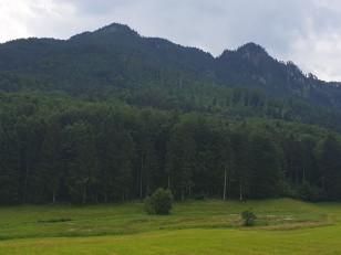 3 Gipfel Bike & Hike: Hirschnagel, Rehleitenkopf und Gr. Riesenkopf