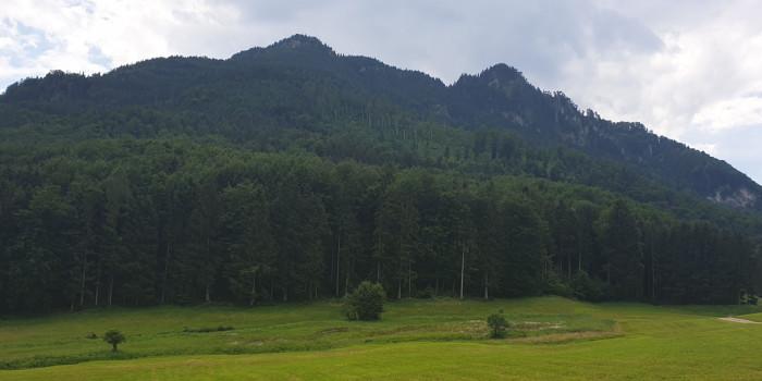 Teaserbild zur Tour - 3 Gipfel Bike & Hike: Hirschnagel, Rehleitenkopf und Gr. Riesenkopf