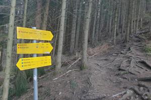 Abzweigung Wanderpfad - Wegpunkt 10 entlang der Tour