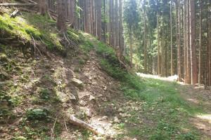 Start Wanderpfad zum Hirschnagel - Wegpunkt 6 entlang der Tour