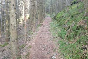 Abstieg über Wanderpfad - Wegpunkt 11 entlang der Tour