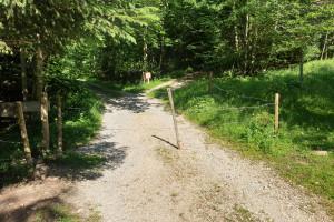 Über den Weidezaun - Wegpunkt 2 entlang der Tour