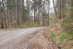 Abzweigung Salinenweg - Wegpunkt 14 entlang der Tour