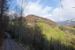 Blick auf den Dandlberg - Wegpunkt 3 entlang der Tour