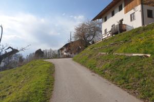Dandlberg-Alm - Wegpunkt 5 entlang der Tour