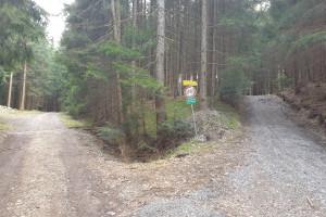 Fahrverbot 2 auf den Dandlberg - Wegpunkt 8 entlang der Tour