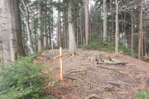 Gipfel Dandlberg - Wegpunkt 9 entlang der Tour