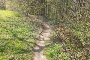 Kurzer Wanderpfad - Wegpunkt 15 entlang der Tour
