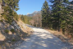 Blick auf Hochsalwand - Wegpunkt 3 entlang der Tour